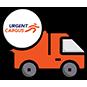 Expediere rapida in 24 ore prin Urgent Cargus